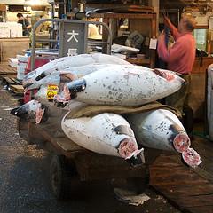 Sushi Safety: On Mercury