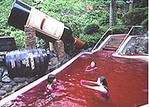 Hakone Kowakien Yunessun Spa