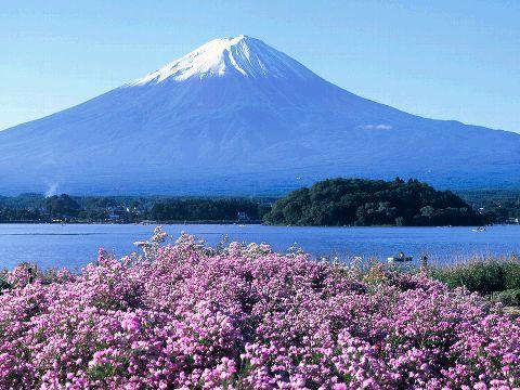 Mt. Fuji Skate For Charity